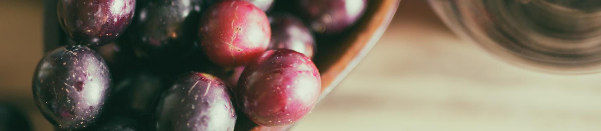 polifenoles propiedades alimentos